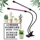 多肉植物種植燈 LED 雙頭燈管 夾式植物生長燈 防水型植物種植燈