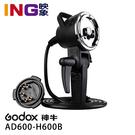 【24期0利率】GODOX AD-H600B 手持型延長1.73米600瓦燈頭 (不附燈管) 保榮卡口