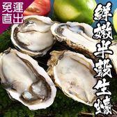 海鮮王 巨肥鮮嫩半殼生蠔 *4包組(約12顆/600g/包)【免運直出】