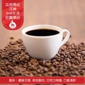 豆點咖啡➤ 瓜地馬拉 花神 SHB 水洗 ☘莊園單品☘濾掛12入