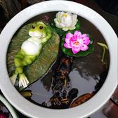 水缸造景魚缸魚池裝飾造景戶外仿真鴨子青蛙漂浮擺件【君來佳選】