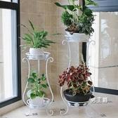 花架鐵藝花架子室內多層落地式綠蘿吊蘭花盆架客廳置物架植物架XW 快速出貨