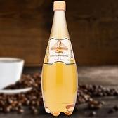 特價 【Daly-達利】香草糖漿(1.3kg/瓶)- (有效期限:2021/02/16)【良鎂咖啡吧台原物料商】