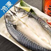 【整箱最划算】整尾薄鹽挪威鯖魚一夜干280-300G/尾(18入/箱)【愛買冷凍】