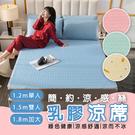 (1.2m)冰絲乳膠涼蓆 涼蓆 涼墊 床...