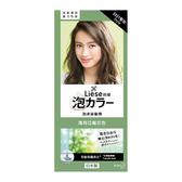 莉婕泡沫染髮劑薄荷亞麻灰色108ml【愛買】
