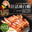 【屏聚美食】巨無霸馬來海水養殖活凍21/25生白蝦3盒(600G/15±3尾)免運