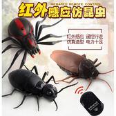 仿真遙控蜘蛛玩具蟑螂整人玩具昆蟲玩具 9915A【77小物】