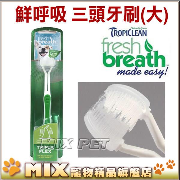 ◆MIX米克斯◆美國Fresh breath鮮呼吸.0216三刷頭牙刷(M/L 中大型犬適用) 全面清潔口腔中的細縫