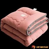 水洗棉被子冬被加厚保暖四季通用被芯單人雙人棉被褥太空被【小獅子】
