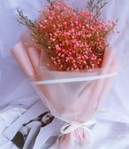 香皂花 粉色滿天星勿忘我幹花花束七夕情人節生日禮物禮盒送女友