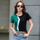 中大碼T恤短袖上衣純棉夏季新款時尚修身顯瘦撞色圓領短袖t恤女H350-C.1號公館