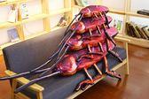 【現貨供應】爆款創意仿真大蟑螂小強抱枕毛绒玩具古怪玩偶 生日禮物 整人 送禮【H00563】