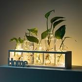 小清新玻璃花瓶透明插花花器客廳家居裝飾擺件【英賽德3C數碼館】