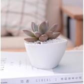 不規則三角形陶瓷多肉花盆盆栽(單入) CARMO【BI11004】