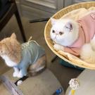貓咪衣服防掉毛冬裝保暖貓貓寵物貓抖音同款可愛秋冬季貓衣服 店慶降價