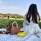 野餐籃 手工塑料編織筐時尚購物籃野餐水果收納框小寵物藍洗澡手提菜籃子 酷3c達人NMS