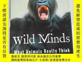 二手書博民逛書店wild罕見minds what animals really