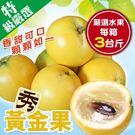 【果之蔬-全省免運】台灣黃金果3斤±10...
