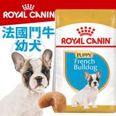 【培菓寵物48H出貨】BHN 法國新皇家飼料《法國鬥牛幼犬FBDP》3KG