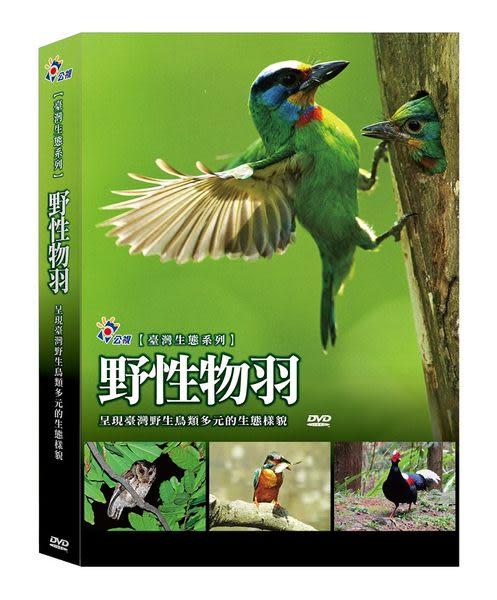 野性物羽 DVD   (音樂影片購)
