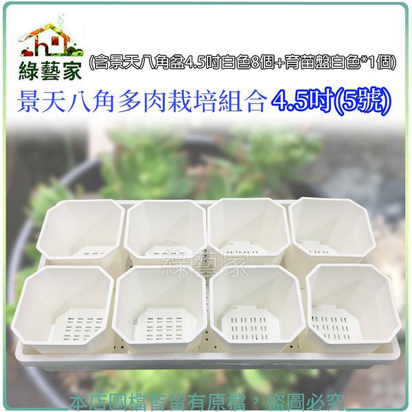 【綠藝家】景天八角多肉栽培組合4.5吋(5號)(含景天八角盆4.5吋白色8個+育苗盤白色*1個)