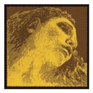 德國PIRASTRO Evah Pirazzi Gold金美人鎢鋼小提琴套弦-小提44專用/金G弦