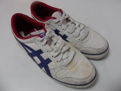 洗鞋一洗鞋劑一洗藍球鞋一洗NIKE鞋一洗ASICS鞋一洗PAMAX鞋一洗鞋子一洗NB鞋一洗慢跑鞋