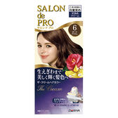 DARIYA沙龍級白髮專用快速染髮霜6黑褐棕