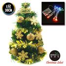 聖誕樹-摩達客 台灣製迷你1呎/1尺(30cm)裝飾綠色聖誕樹(金球雪花系)+LED20燈彩光電池燈
