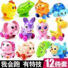 發條動物嬰兒玩具兒童小孩幼兒益智寶寶玩具0-1-2一周歲6-12個月CY『小淇嚴選』