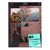 櫻重奏曲 實境之旅 藍光BD  (音樂影片購)