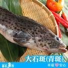 【台北魚市】 大石斑魚(青斑) 600g~700g