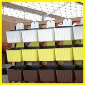 【新年鉅惠】壁掛懶人方形豎紋自動吸水花盆樹脂水培塑料植物花盆送掛鉤p503