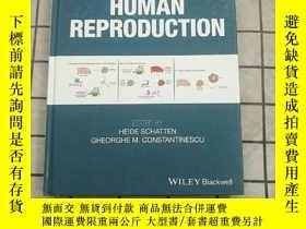 二手書博民逛書店Animal罕見Models And Human Reproduction [Wile... 進口原版 Y26