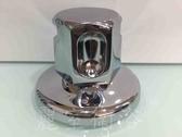 【麗室衛浴】美國原裝進口 THERMASOL Deluxe Aromatherapy SteamHead 蒸氣噴頭 E-003-2