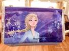 *Yvonne MJA* 美國迪士尼 預購區 限定正品 冰雪奇緣2 艾莎 筆袋