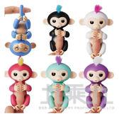 互動寵物猴/ 6色  WW13700