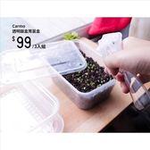 CARMO透明飯盒多肉植物育苗盒(3入)【C001004】