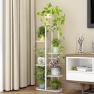 花架子多層室內特價家用陽台置物架鐵藝客廳...