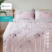 Minis 100%純天絲40支 床包兩用被套四件組 雙人加大 和風森光