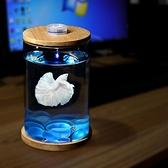 水族箱 斗魚缸迷你小型玻璃魚缸桌面微景觀賞辦公室水族箱生 晶彩 99免運LX
