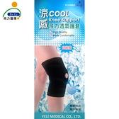 *醫材字號*【Fe Li 飛力醫療】涼感透氣護膝(單入)