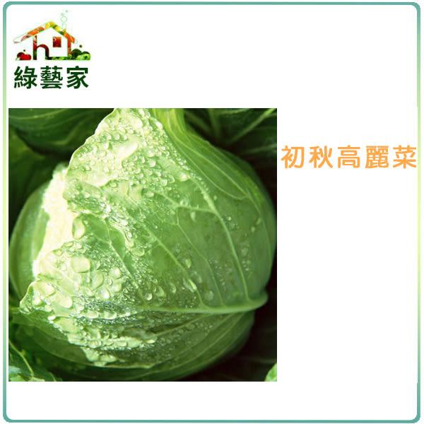 【綠藝家】B01.初秋高麗菜種子(梨山品種)100顆