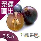 沁甜果園SSN 新社古家御品巨峰葡萄(2.5公斤/箱)E00900010【免運直出】