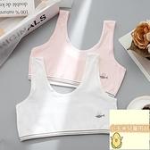 3件裝 少女國小生文胸女童內衣發育期小背心女孩學生