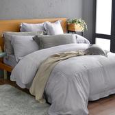 法國CASA BELLE《皇室香緹》加大天絲刺繡四件式防蹣抗菌吸濕排汗兩用被床包組 銀色