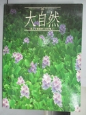【書寶二手書T9/地理_QBQ】大自然(季刊)_第16期_台灣濕地專輯