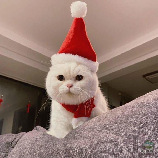 寵物頭套圣誕帽貓貓頭套貓咪頭飾裝扮圍巾帽套裝【步行者戶外生活館】