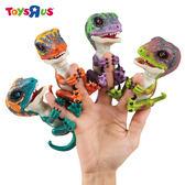 玩具反斗城  互動寵物恐龍/手指恐龍 (隨機出貨)